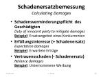 schadenersatzbemessung calculating damages