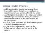 biceps tendon injuries2