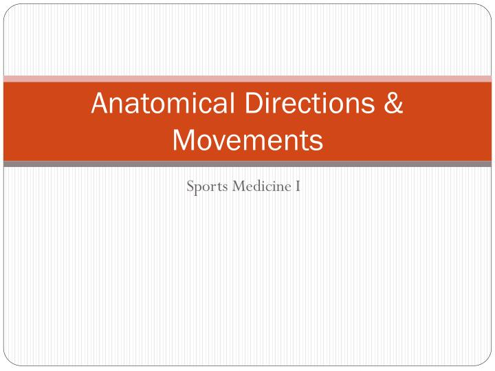 anatomical directions movements n.