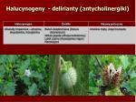 halucynogeny delirianty antycholinergiki