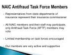 naic antifraud task force members