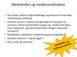 mediekultur og mediesocialisation