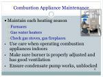 combustion appliance maintenance