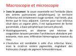 macroscopie et microscopie