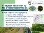 ecosystem restoration by top predator recolonization