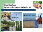 heidi mahon research technician belovsky lab