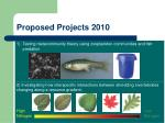 proposed projects 2010