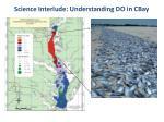 science interlude understanding do in cbay