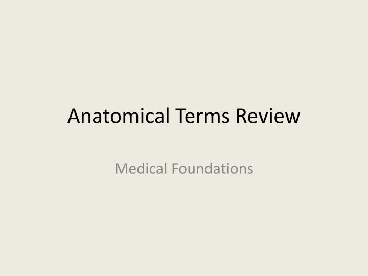 anatomical terms review n.