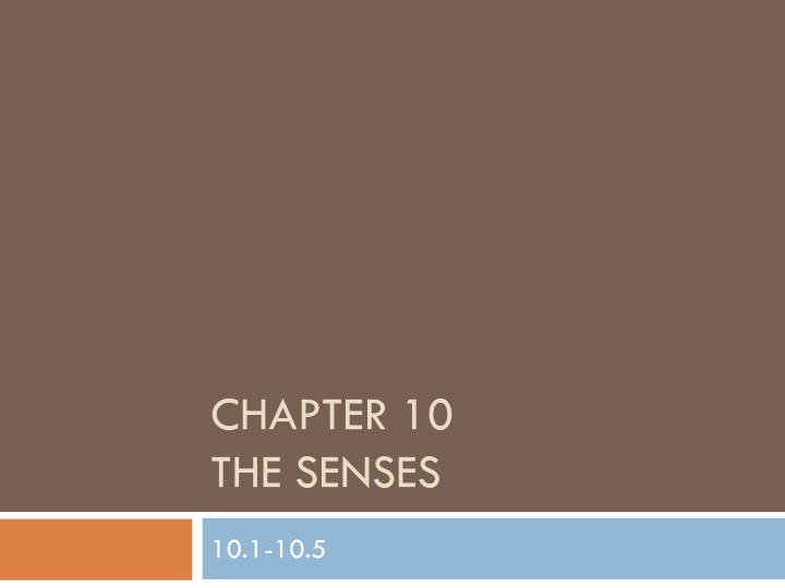 chapter 10 the senses n.