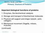 amino acids and the primary stucture of proteins