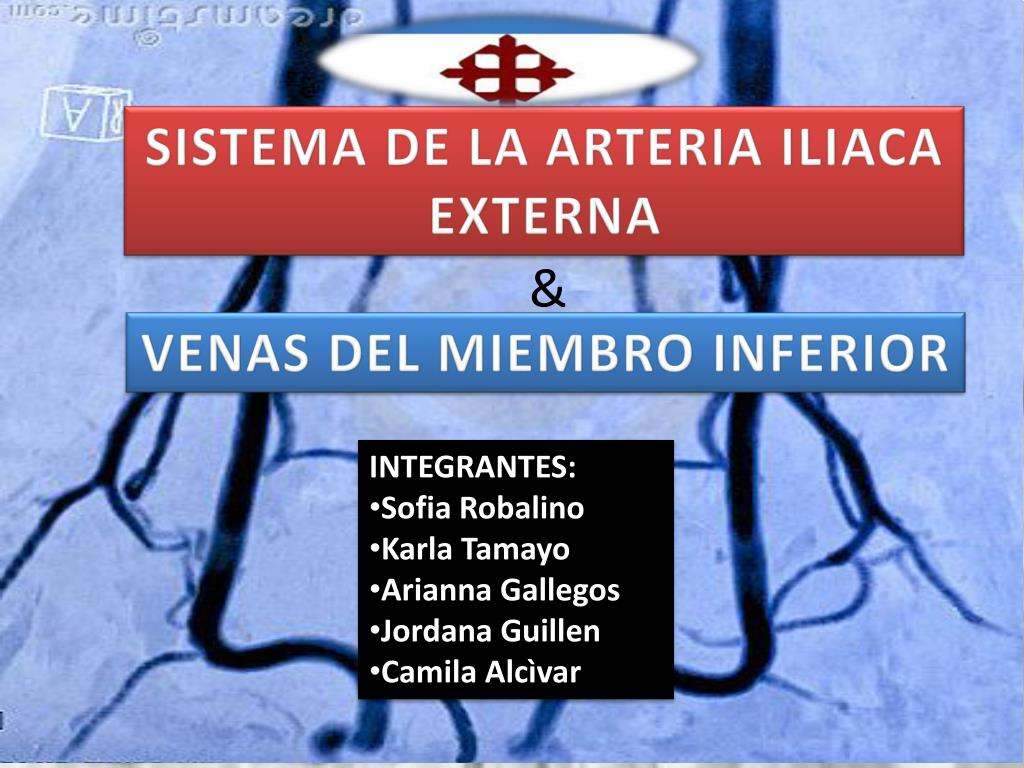 PPT - SISTEMA DE LA ARTERIA ILIACA EXTERNA PowerPoint Presentation ...