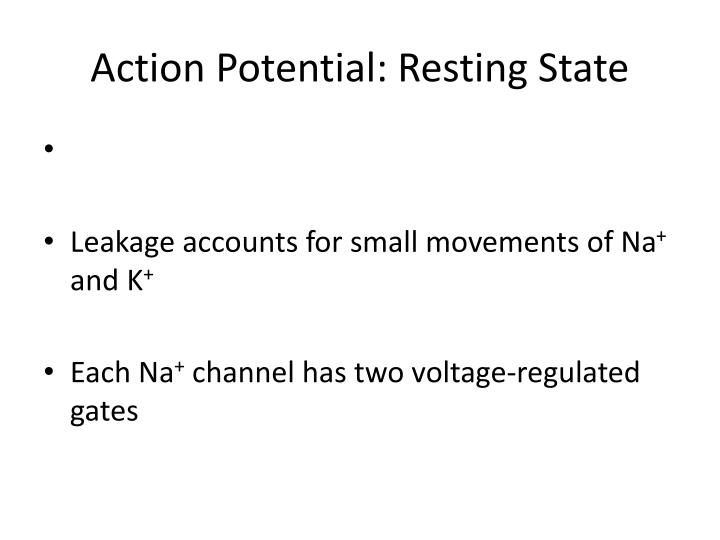 action potential resting state n.