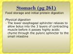 stomach pg 261