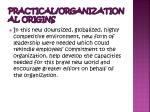 practical organizational origins