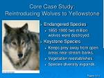 core case study reintroducing wolves to yellowstone