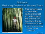solutions reducing demand for harvest trees