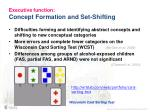 executive function concept formation and set shifting