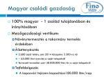 magyar csal di gazdas g