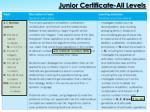 junior certificate all levels1