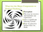 what are the major components in prudent thinking1
