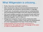 what wittgenstein is criticising