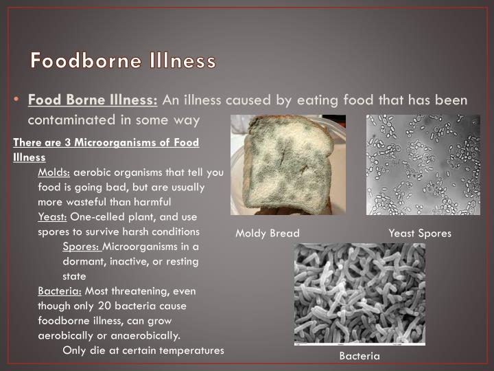 food borne illness essay When thinking of parasites and food-borne illnesses we tend to think about the poorest and dirtiest places on earth in reality.
