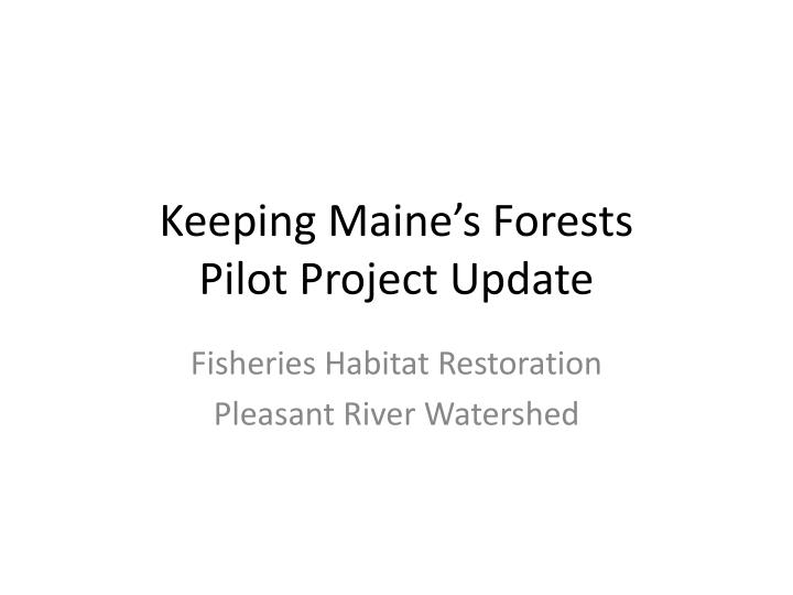 keeping maine s forests pilot project update n.