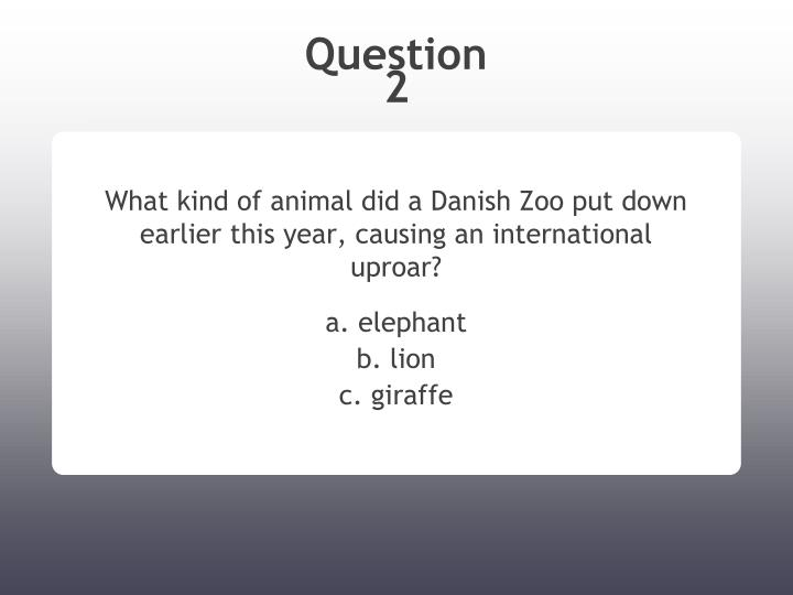 What kind of animal did a danish zoo put down earlier this year causing an international uproar