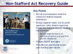 non stafford act recovery guide