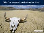 what s wrong with a vale of soul making