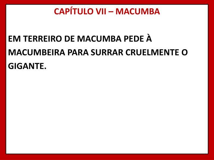 CAPÍTULO VII – MACUMBA