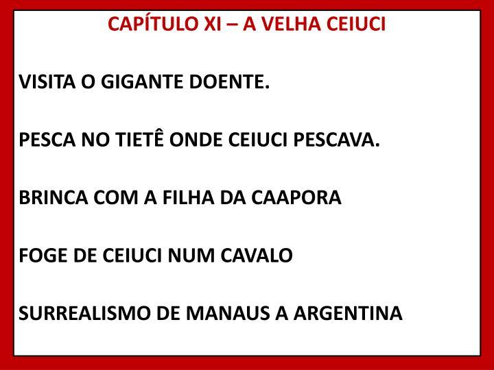 CAPÍTULO XI – A VELHA CEIUCI
