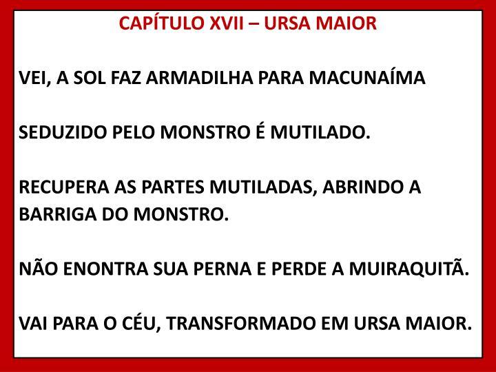 CAPÍTULO XVII – URSA MAIOR