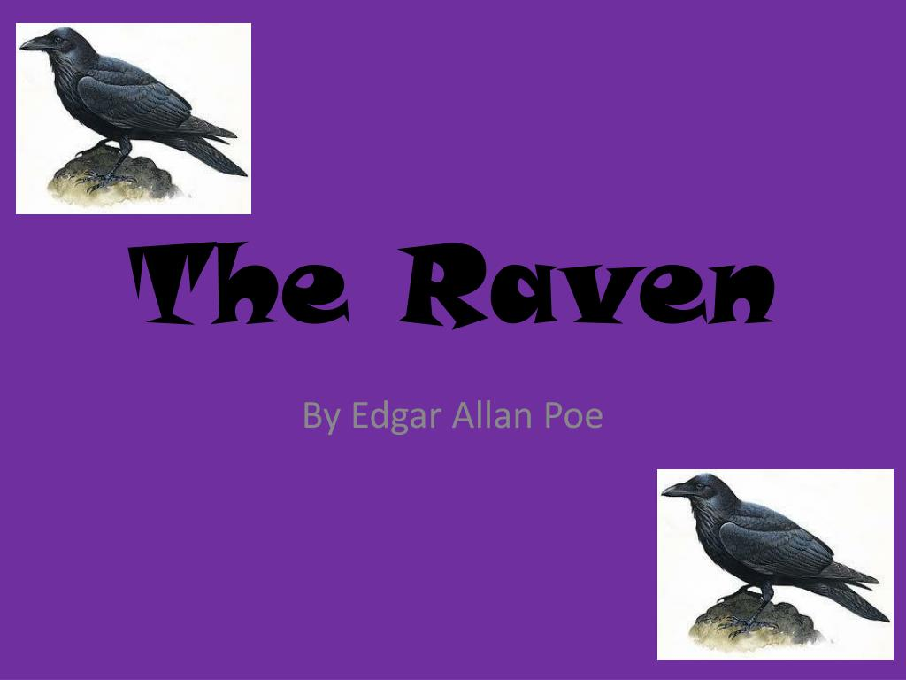 PPT - The Raven PowerPoint Presentation - ID:2077056