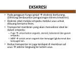 ekskresi1
