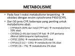 metabolisme1