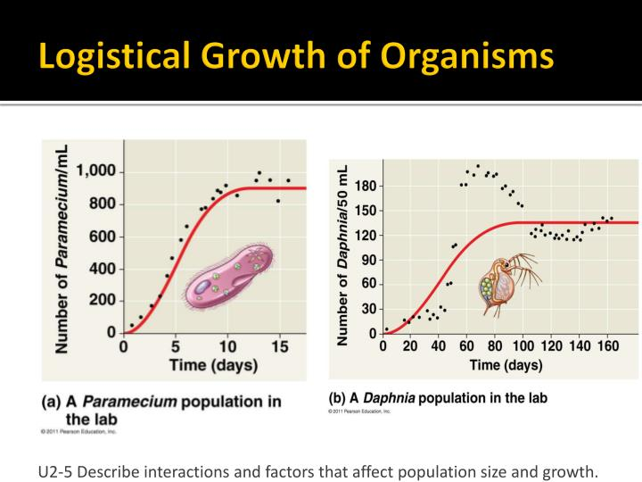 Logistical Growth of Organisms