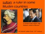 sultan a ruler in some muslim countries