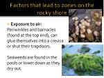 factors that lead to zones on the rocky shore