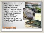 krokodillid
