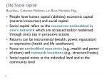 3b social capital bourdieu coleman wellman lin burt marsden flap