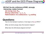 sqgp and the qcd phase diagram