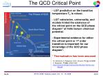 the qcd critical point