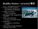buddha nature revisited