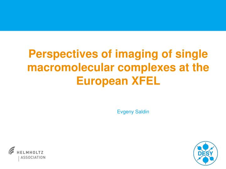 perspectives of imaging of single macromolecular complexes at the european xfel n.