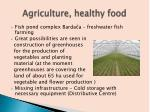 agriculture healthy food1