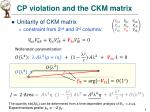 cp violation and the ckm matrix