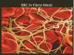rbc in fibrin mesh