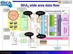 ska 2 wide area data flow